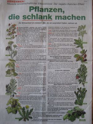 11 pflanzen schlank kur psiram